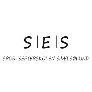 SES DK