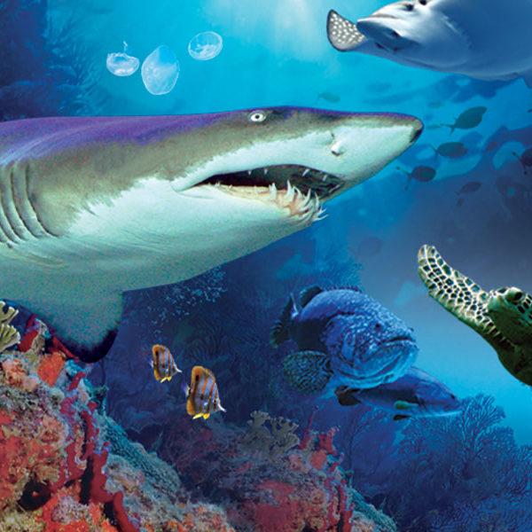 aquaria_klcc